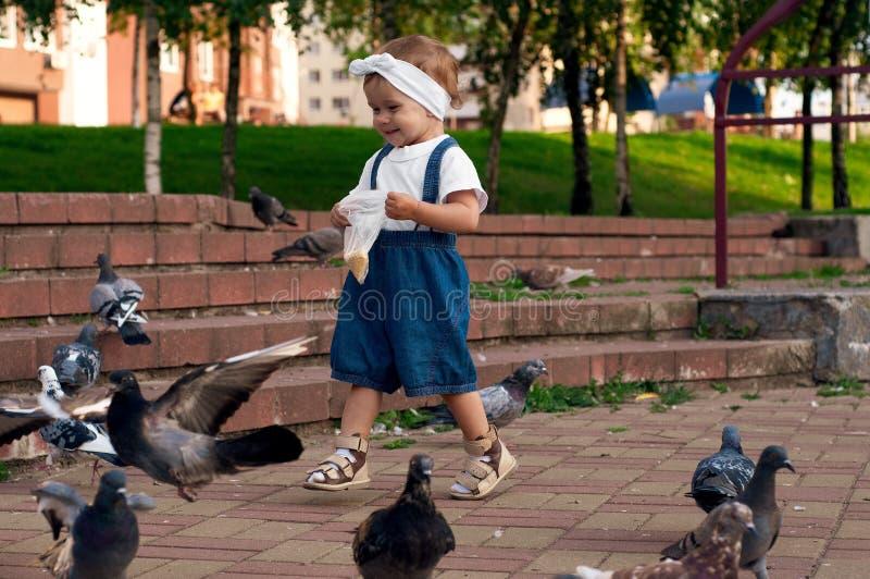 En liten flicka som springer nära duvor, jagar duvor, ett lyckligt barn med ett leende ansikte Kid ger duvor i stadsparken royaltyfri foto