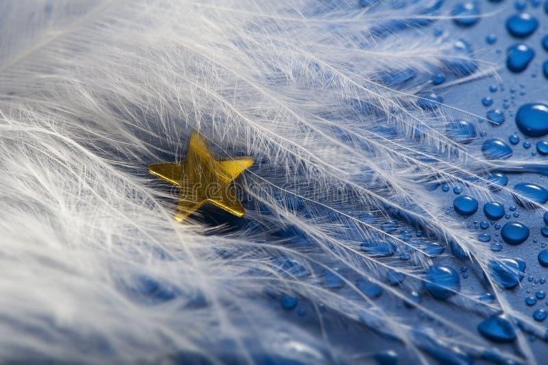 En liten guld- stjärna arkivbild