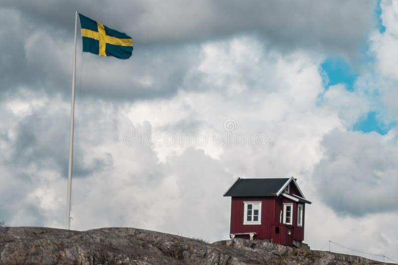 En liten koja bredvid svensk flagga royaltyfria foton
