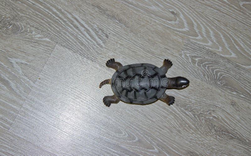 En liten leksaksköldpadda arkivbilder