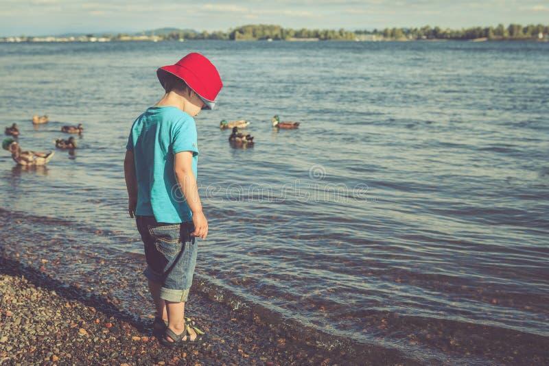 En liten pojke på flodstranden på eftermiddagen arkivbilder