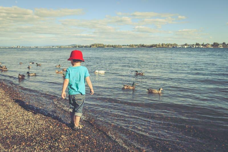 En liten pojke på flodstranden på eftermiddagen royaltyfria foton