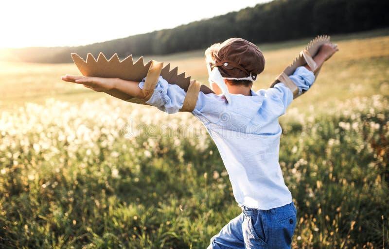En liten pojke som spelar på en äng i natur, med skyddsglasögon och vingar som, om flyga arkivfoto