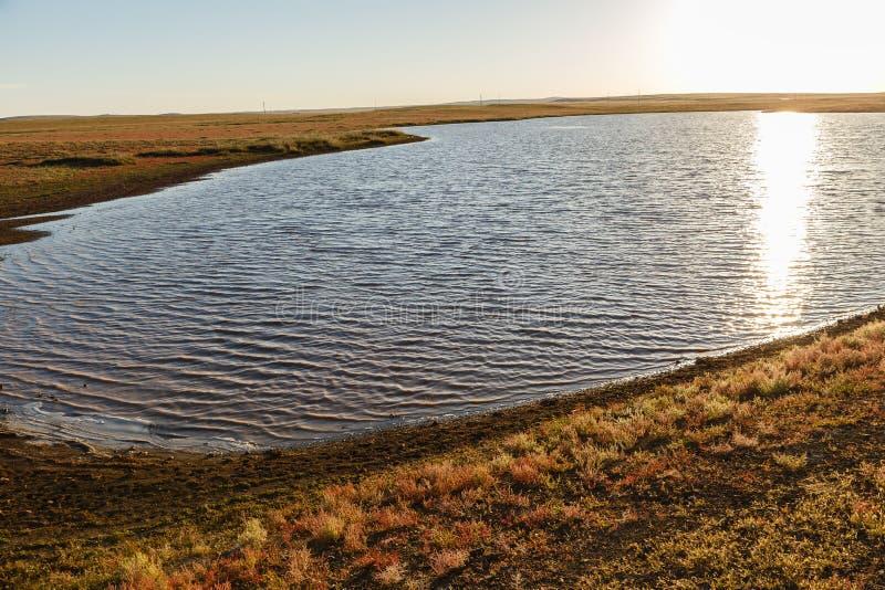 En liten sjö i den mongolian stäppen royaltyfria foton