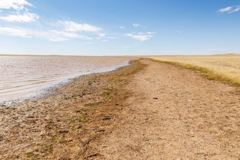 En liten sjö i den mongolian stäppen fotografering för bildbyråer