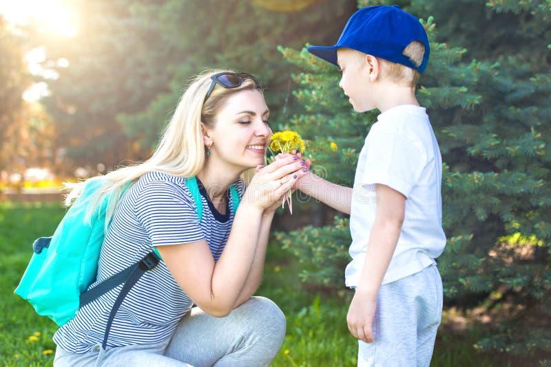 En liten son ger hans älskade moder en bukett av maskrosor royaltyfria bilder