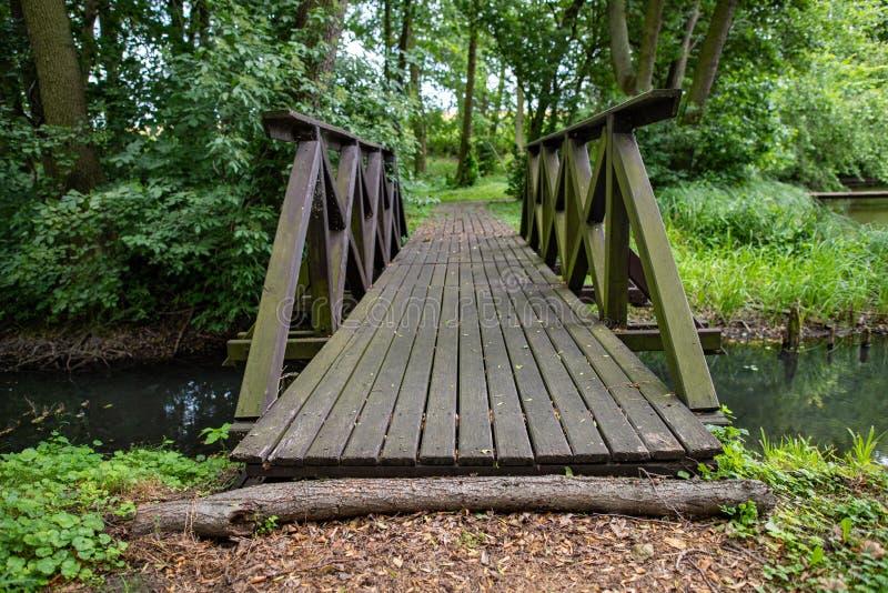 En liten träbro i parkerar Korsa en liten flod i skogområdet royaltyfria foton