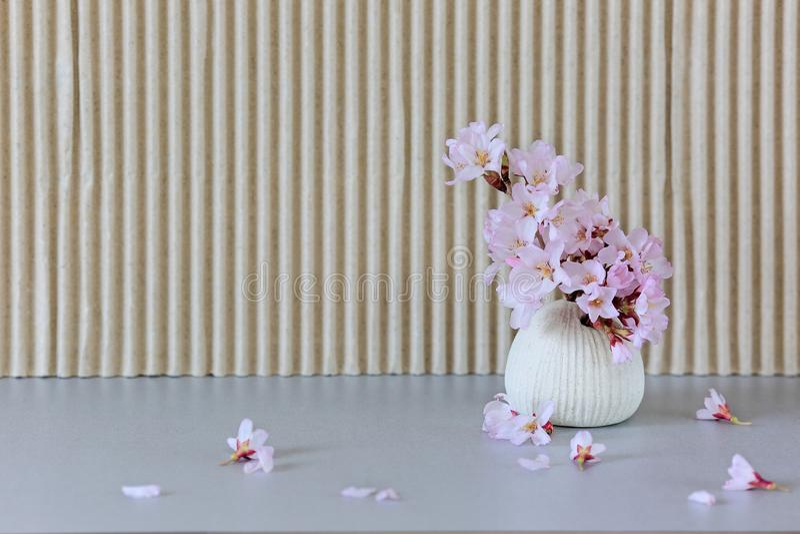 En liten vas med sakura blommor royaltyfria foton