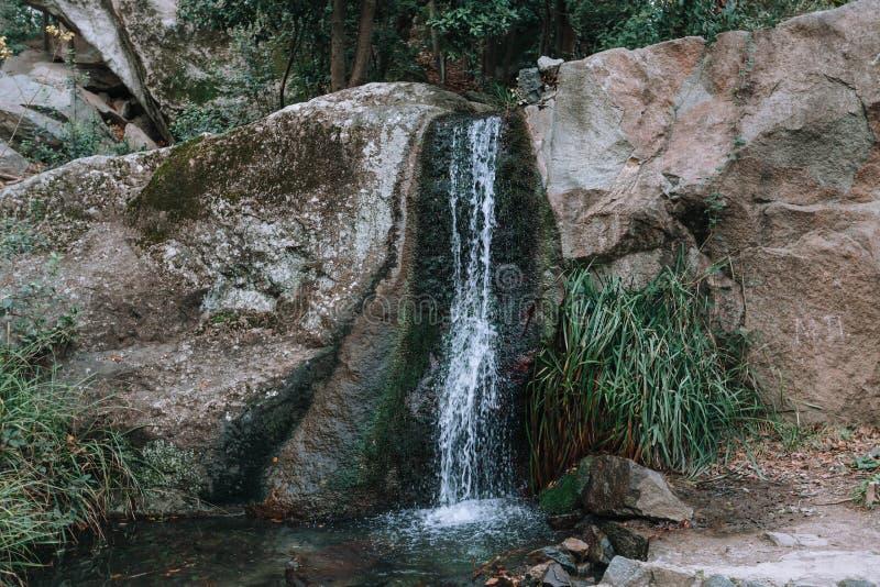 En liten vattenfall fördjupade på våren gräsplanträd arkivfoton