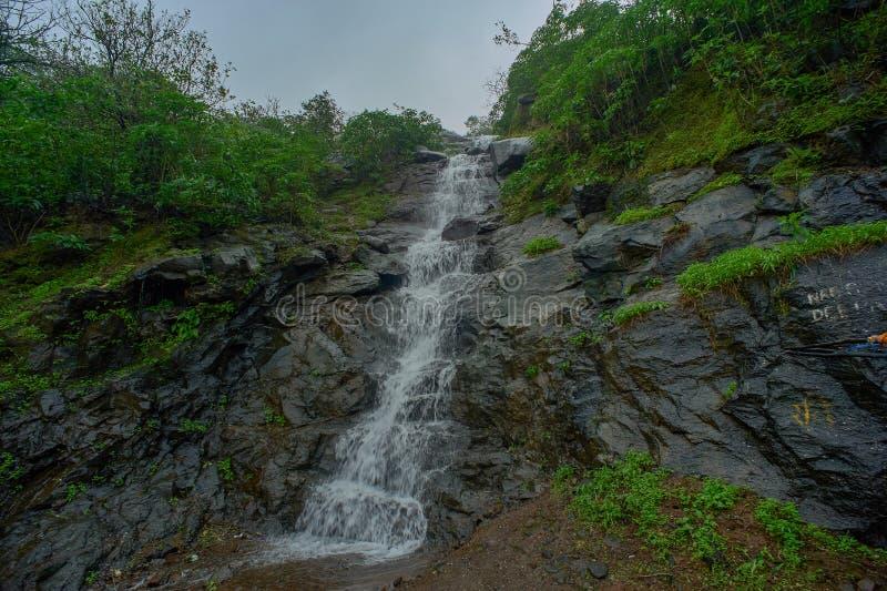 En liten vattenfall i skogarna av de västra ghatsna i Malshej ghat, Maharashtra arkivbilder