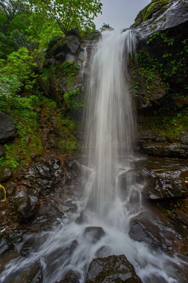 En liten vattenfall i skogarna av de västra ghatsna i Malshej ghat, Maharashtra arkivfoton