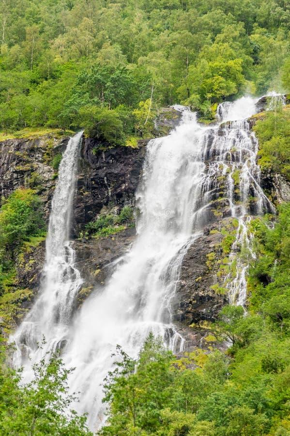 En livlig vattenfall som flödar ner, vaggar i skogen som inramas av träd arkivfoton