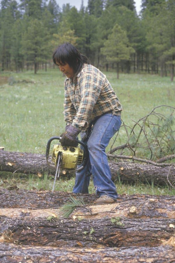 En logger som klipper en journal arkivbild