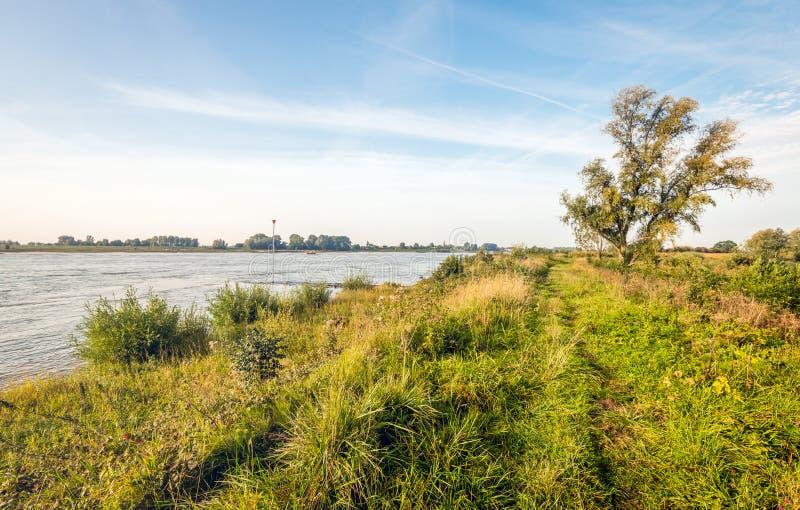 En los bancos de un río holandés ancho fotografía de archivo libre de regalías