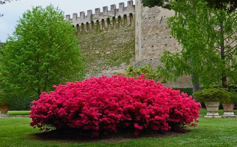 En los jardines de Vaticans imagenes de archivo