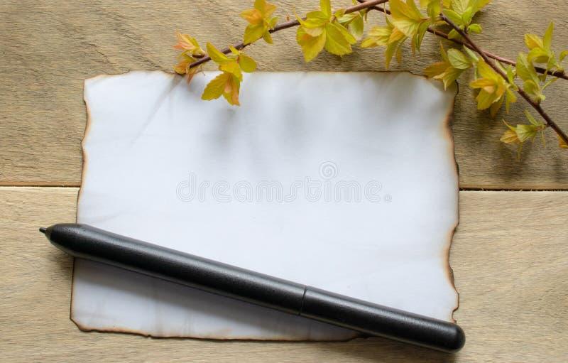 En los tableros de madera hay una pluma negra, ramas con las hojas amarillas, una hoja de papel blanca quemada en los bordes, sal fotos de archivo