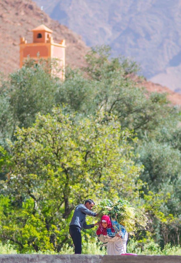 En lycklig fattig bondekvinna för gammal dam med den gamla traditionella muslinhalsduken och klänning i den Marocko byn royaltyfri foto