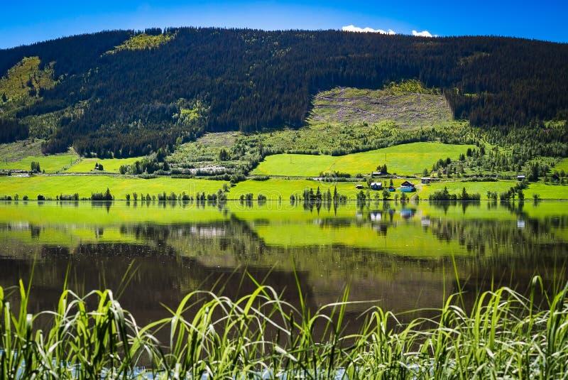 En majestätisk lantlig panoramasikt av grön jordbruksmark, träd, den tysta sjön och berg i bygden, natursommarlandskap royaltyfri fotografi