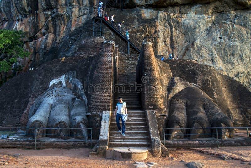 En man går till och med lejonen tafsar som leder till toppmötet av Sigiriya vaggar i Sri Lanka arkivbild