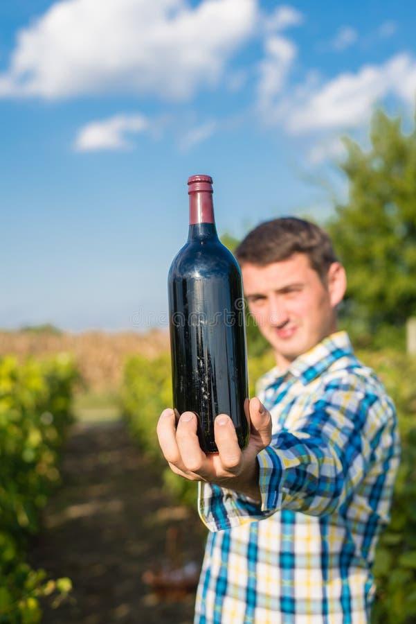 En man i en vingård royaltyfri bild