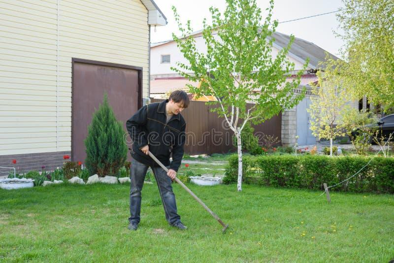 En man krattar gammal lövverk på en gräsmatta för grönt gräs på hans sommarställe arkivbild