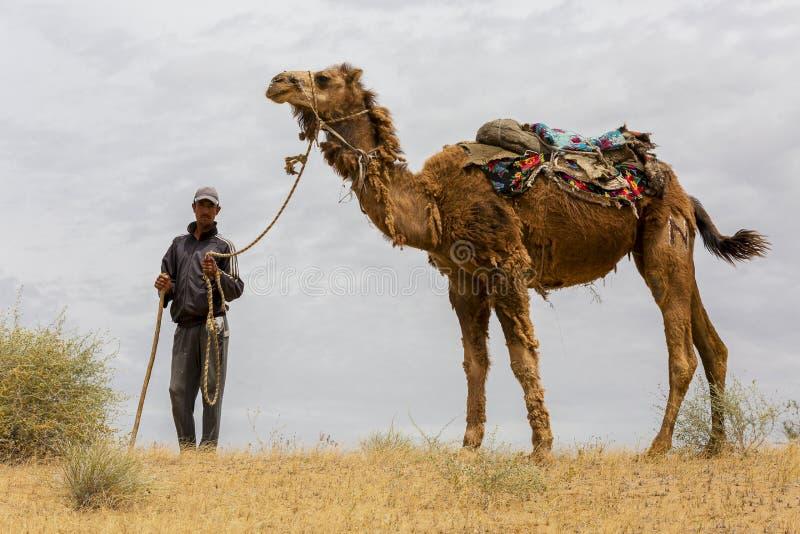 En man med hans kamel i den Kyzylkum öknen i Uzbekistan, blickar på mig arkivbild