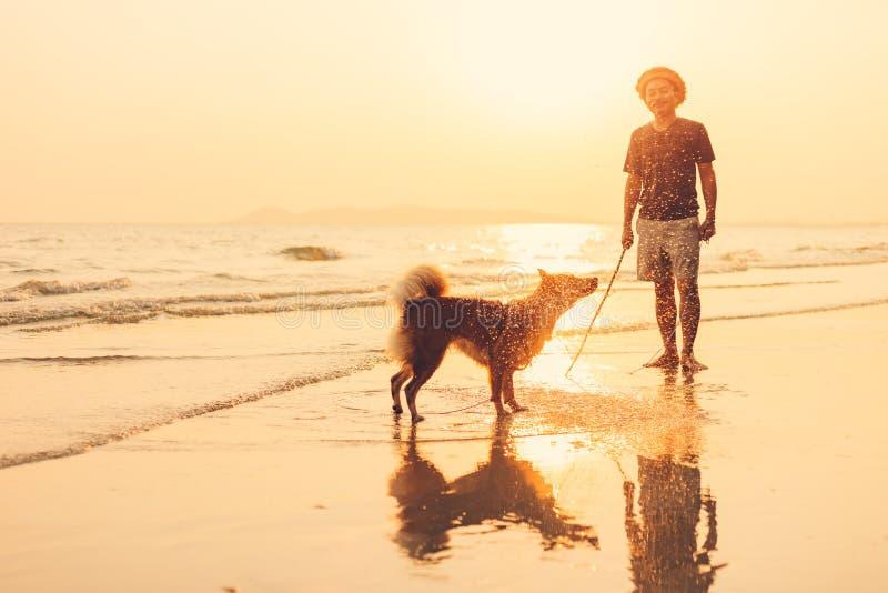 En man och en hundställning på stranden och solnedgången, soluppgång royaltyfria bilder