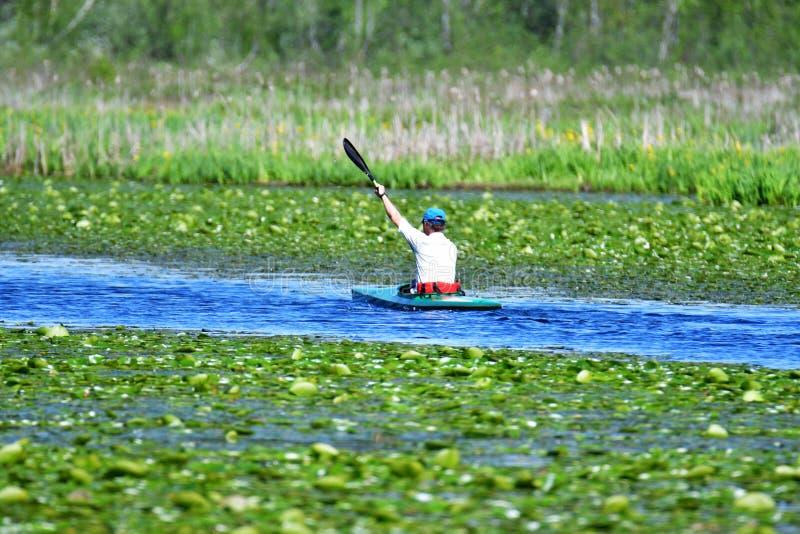 En man ror längs sjön på en kajak royaltyfri bild