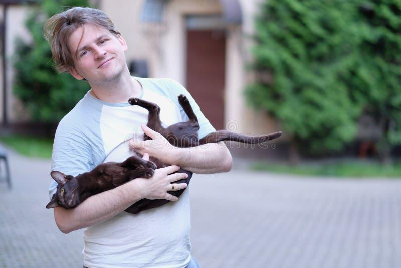 En man rymmer en Siamese inhemsk katt arkivfoton