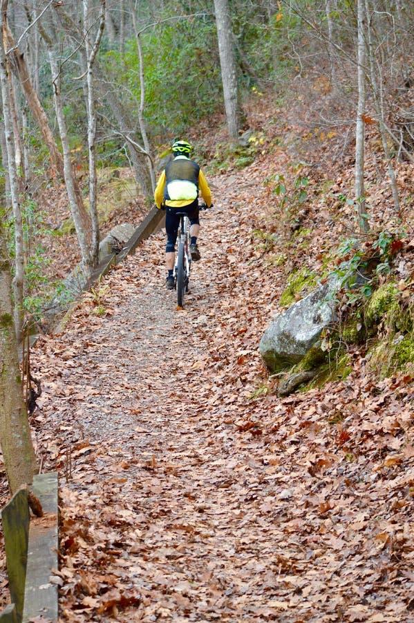 En man som rider hans cykel till och med bergen av Tennessee royaltyfri fotografi