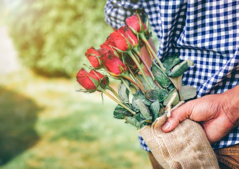 En man som rymmer en röd ros i hans hand för att vänta på dag för valentin` s arkivbild