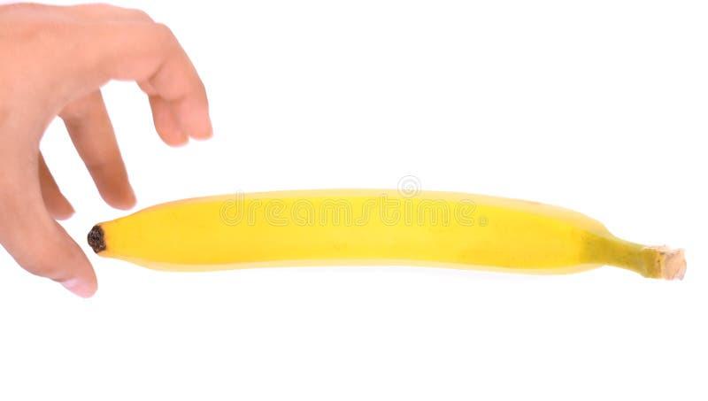 En manlig hand önskar att ta en mogen och söt bananfrukt som isoleras på en vit bakgrund Ny ljus gul banan arkivbilder