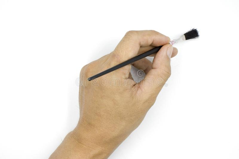 En manlig hand som rymmer den lilla rodnaden som flåsar rodnar, manhanden som isoleras på vit bakgrund arkivbilder