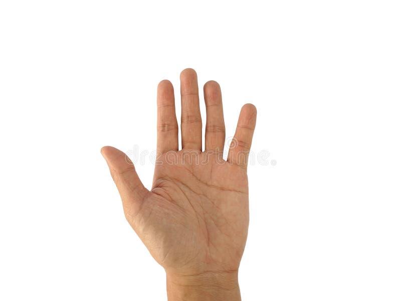 En mans hand med ett symbol på vit bakgrund royaltyfri bild