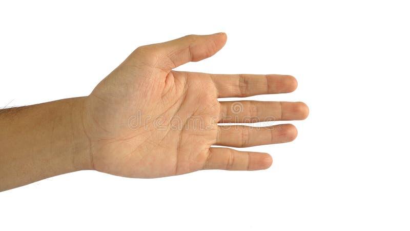 En mans hand med ett symbol på vit bakgrund, den manliga handens shower räcker skakagest royaltyfri foto