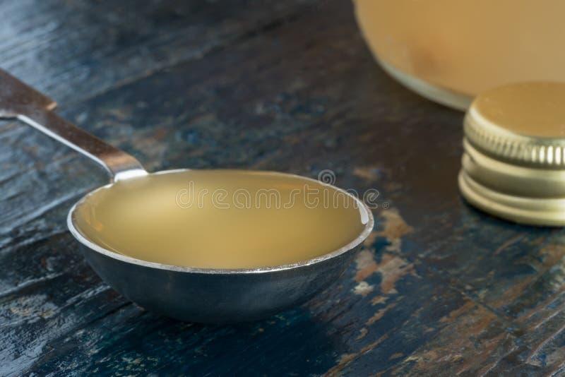 En matsked av äppelcidervinäger arkivbild