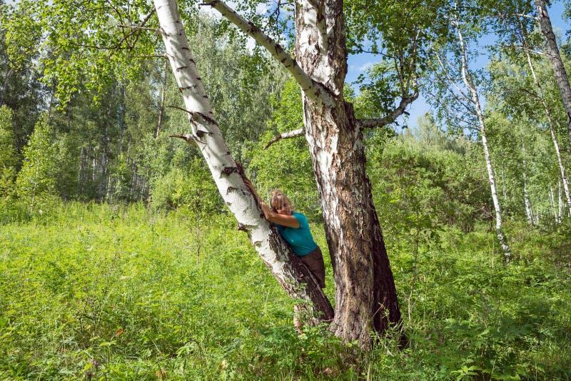 En medelålders kvinna lutade mot ett björkträd i skogen royaltyfria foton