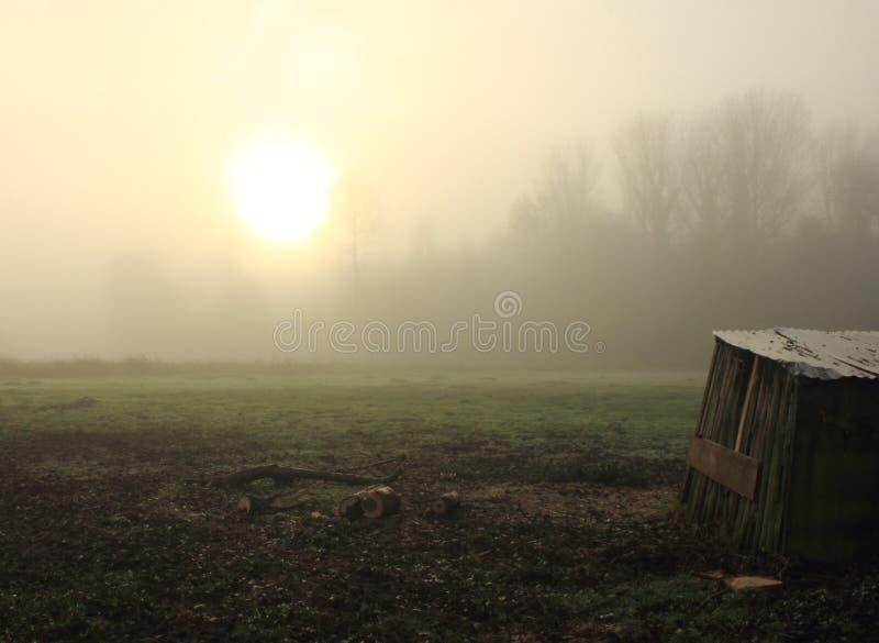 En Misty Morning fotografering för bildbyråer