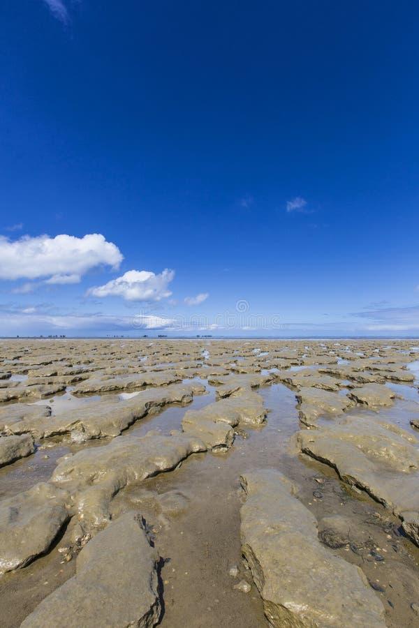 En Moddergat de Paesens do bij de Wadddengebied, Tidalflats no en de Paesens foto de stock