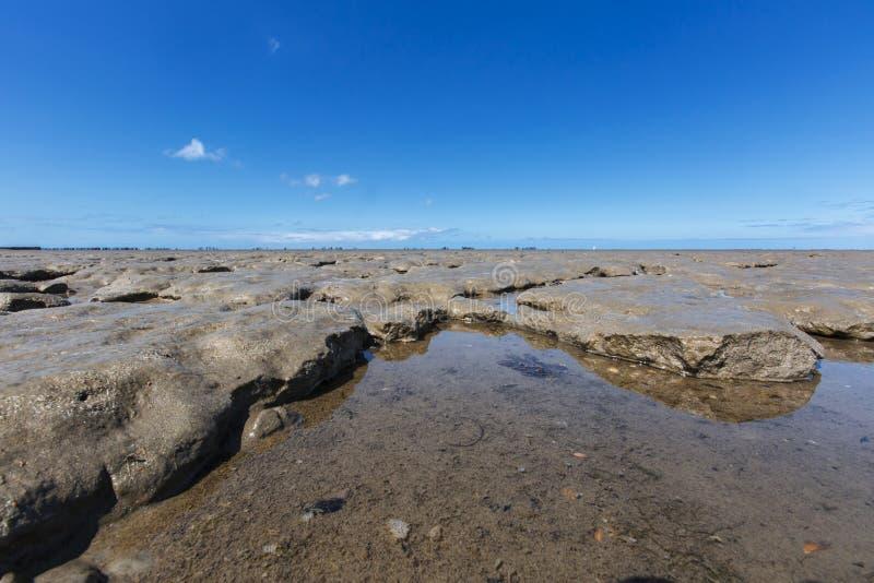 En Moddergat de Paesens do bij de Wadddengebied, Tidalflats no en de Paesens fotografia de stock