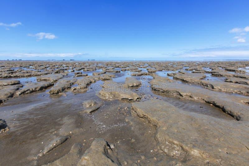 En Moddergat de Paesens do bij de Wadddengebied, Tidalflats no en de Paesens foto de stock royalty free