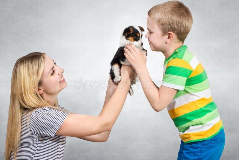 En moder att framlägga hennes son en valp En familj för en hemlös hund Uppfyllelsen av ett barns dröm fotografering för bildbyråer