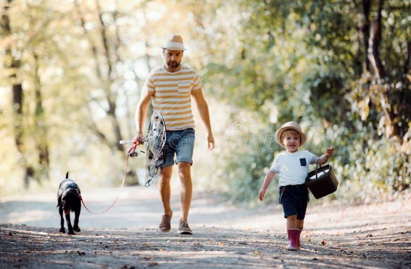 En mogen fader med en liten litet barnson och gående fiska för hund royaltyfri foto