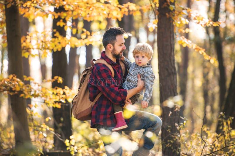 En mogen fader med en litet barnson på går i en höstskog arkivfoto