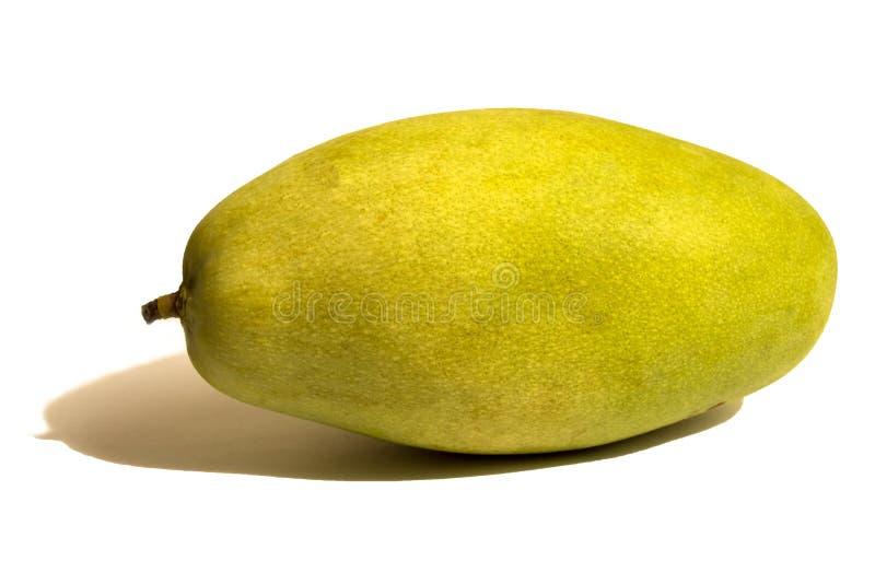 En mogen mango i vit bakgrund royaltyfri bild