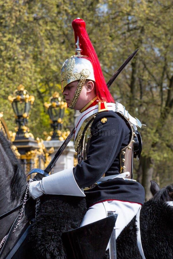 En monterad hästvakt royaltyfria bilder