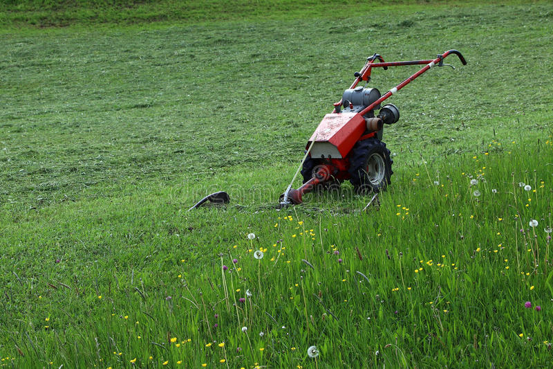 En motorisk gräsklippningsmaskin i fältet royaltyfria foton