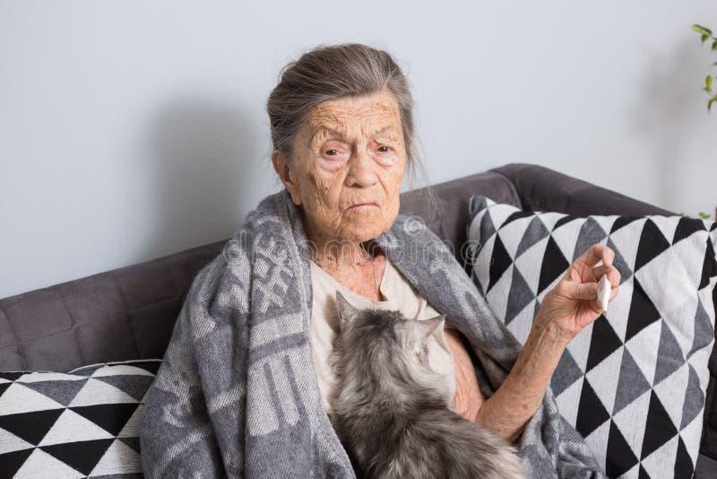 En mycket gammal hög Caucasian farmor med grått hår och djupa skrynklor sitter hemma på en soffa med en husdjurkatt royaltyfri fotografi