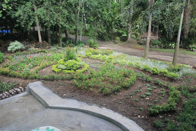 En mycket kall trädgård royaltyfria foton