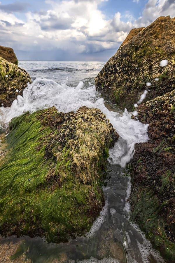 en nära bild av stenar med mage och vattenstänk mellan dem, Lodrät vy royaltyfri bild